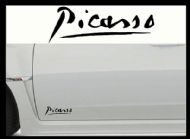 CITROEN PICASSO CAR BODY DECALS